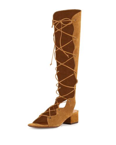 Babies Suede Knee-High Gladiator Sandal, Tan