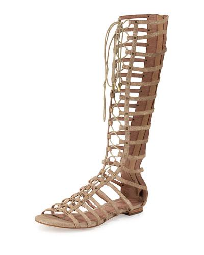 Falicia Tall Gladiator Sandal, Saglia