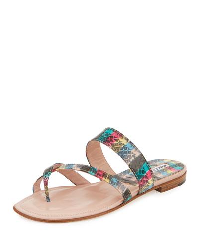 Susa Snakeskin Flat Slide Sandal, Multicolor