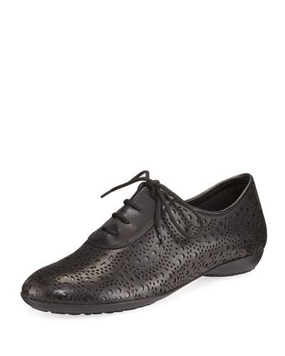 Betka Laser-Cut Oxford Sneaker, Black