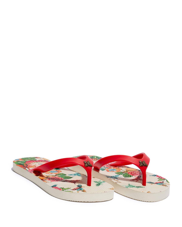 Andrea Hummingbird Flip Flop Thong Sandals