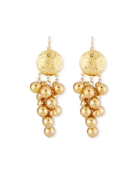 Devon Leigh Cluster Medallion Dangle Earrings
