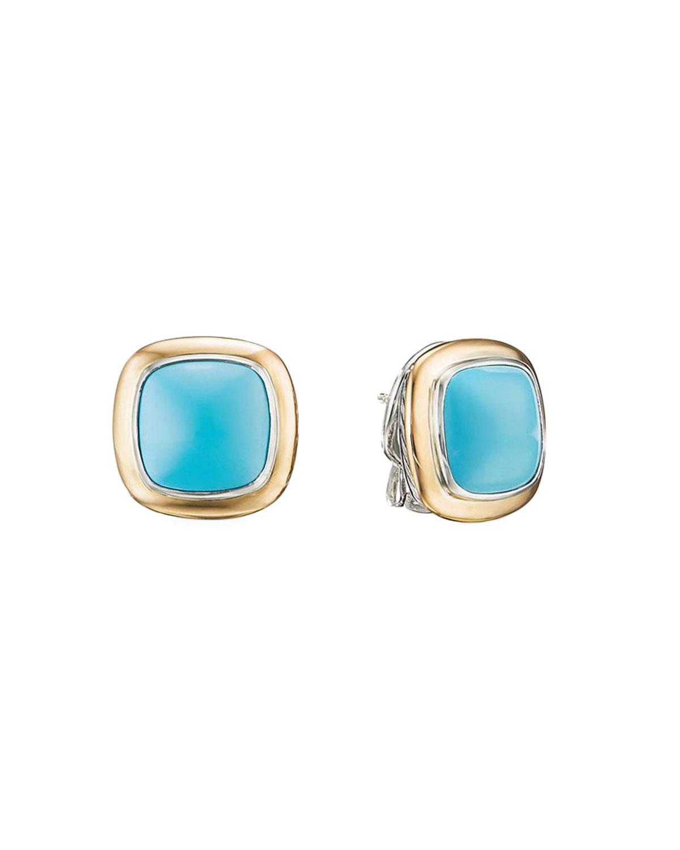 Albion Turquoise Stud Earrings