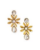 Elizabeth Cole Chrissy Drop Earrings