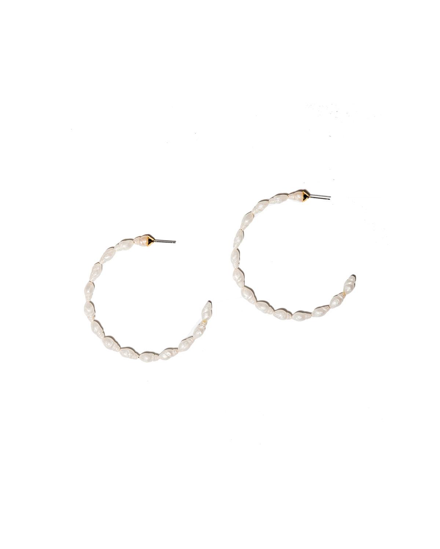 Conch Shell Hoop Earrings
