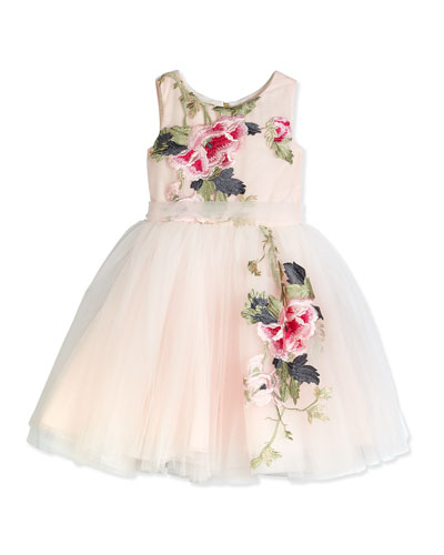 Sleeveless Embroidered Tulle Dress, Pink/Multicolor, Size 7-12