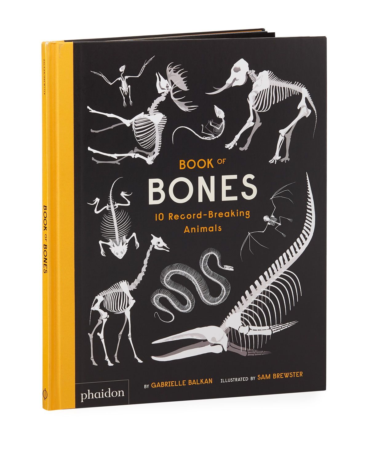 Book of Bones Childrens Book