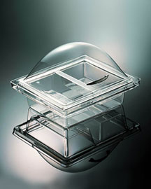 Two-Compartment Acrylic Server -  For Friends & Family -  Neiman Marcus :  family neiman marcus server