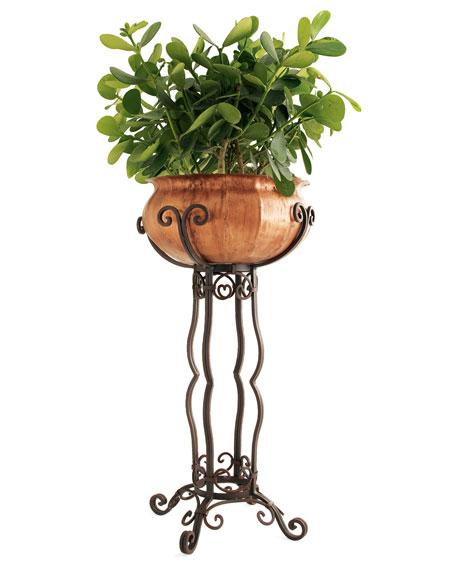 مجموعة النباتات والافكار لتزيين المنازل