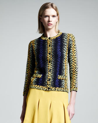 Shagreen-Intarsia Knit Jacket