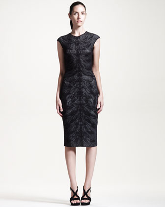 Cap-Sleeve Dragonfly-Knit Dress, Black
