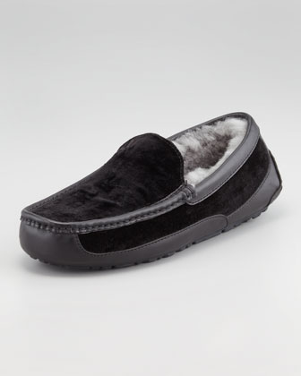 Ascot Velvet Shearling Slipper