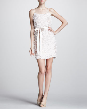 Ruffled Satin-Waist Dress