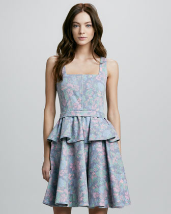 Drew Printed Denim Peplum Dress